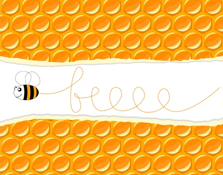 cartoon bee flying through honeycomb illustration Vector