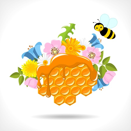 honeycomb with honey, flowers and two cartoon bees on white background Stock Vector - 13919286