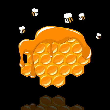 apiculture: honeycomb with a bee on black background - illustration