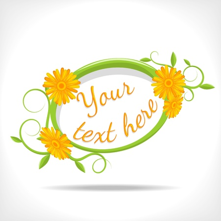 herbal background - banner with marigold Stock Vector - 14395823