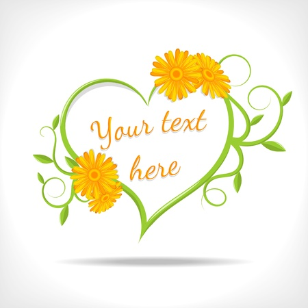 marigold: floral background - heart with flowers of marigold  on white background Illustration