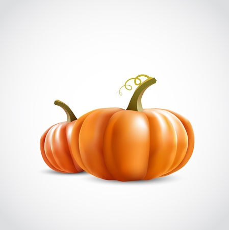 two big orange pumpkins on white background Stock Vector - 15685786