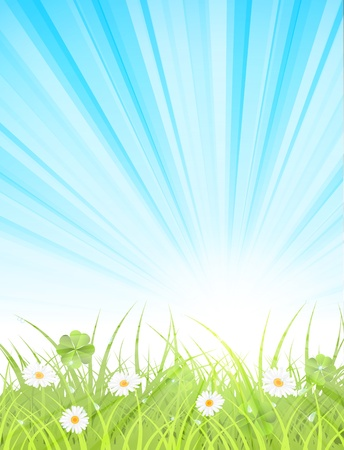 morning dew: green lawn with daisies in spring morning, vector illustration, with transparency, eps 10 Illustration