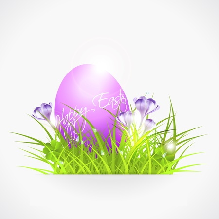 violet easter egg in grass, vith crocuses, vector illustration, with transparency and gradient meshes, eps 10 Stock Vector - 17857808