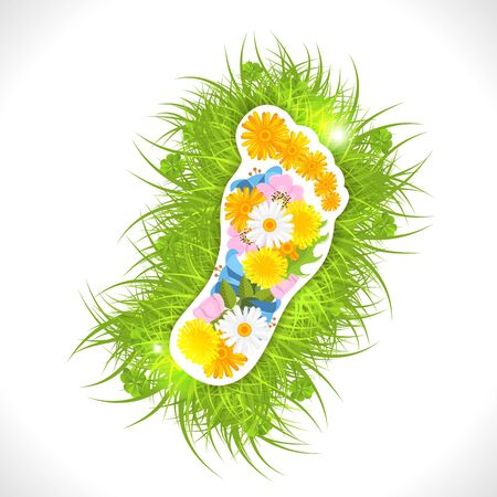 calendula flower: Footprint from flowers in green grass,  illustration, with transparency