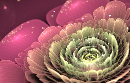 fractal pink: pink and green  fractal flower on black background, illustration