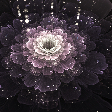 violet fractal flower with droplets of water on black background, illustration illustration