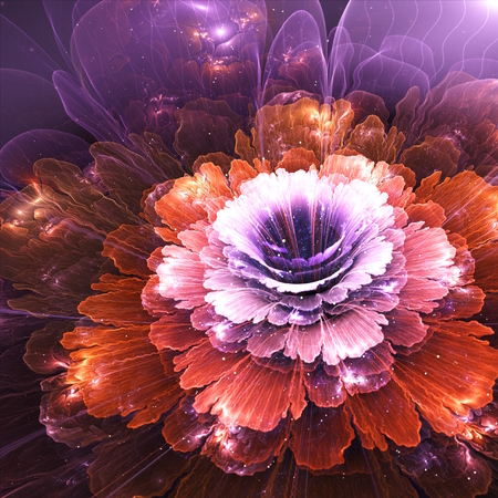 abstract flower, violet and orange, computer generated graphic photo