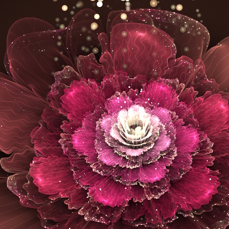fractal pink: red fractal rose, digital illustration