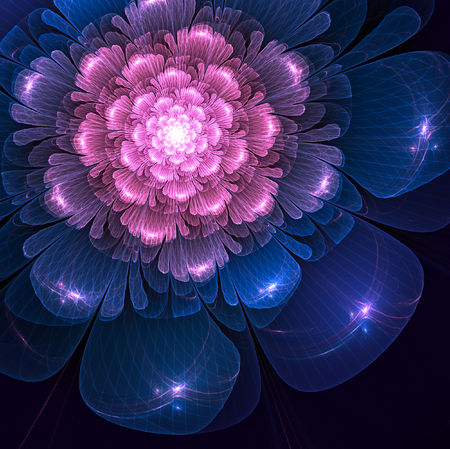 fractal pink: pink and blue  fractal flower fractal flower on black background, illustration Stock Photo