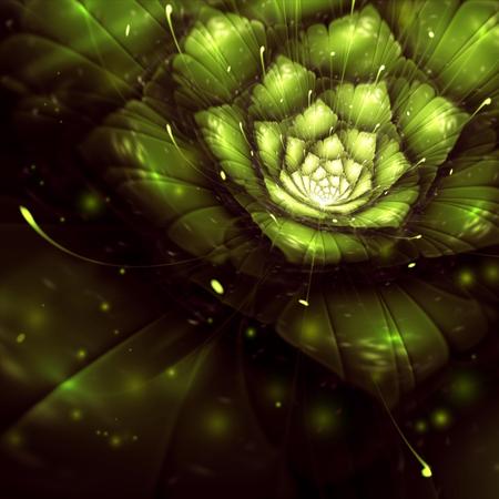 太陽光線、フラクタル、デジタル アート、ビットマップの図で緑の抽象花 写真素材