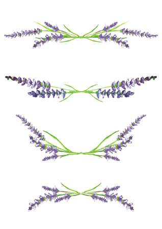 watercolor hand painted lavender branches, scanned and isolated on white background, design elements, illustration