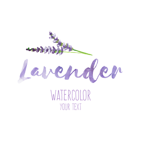 Word Lavender filled by violet watercolor texture and hand painted lavender branch, raster illustration