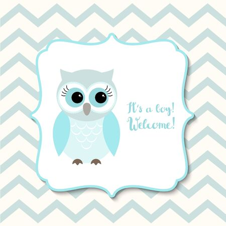 baby blue: Baby shower for boys with cute blue owl on chevron background