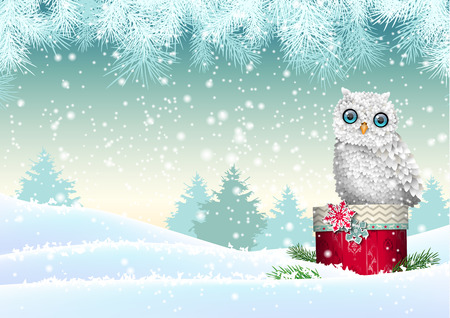 Christmas theme, cute white owl sitting on red gift box in winter snowy landscape, vector illustration