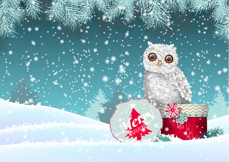 christmas owl: Christmas theme, cute white owl sitting on red gift box in winter snowy landscape, vector illustration