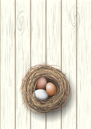 brown egg: Nest with natural eggs lying on white wooden desk, illustration