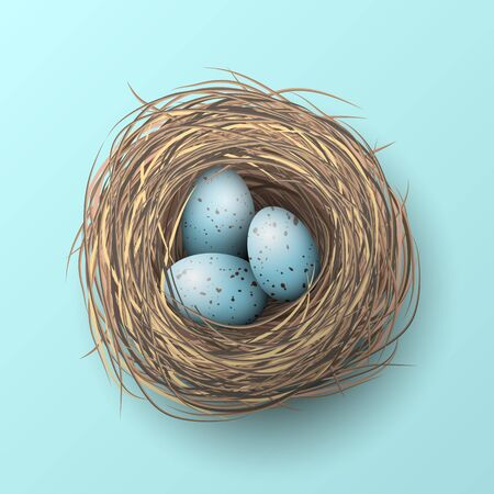 brown egg: Nest with blue eggs on blue background, illustration