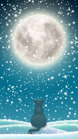 Winter background, cat sitting in snow under moon