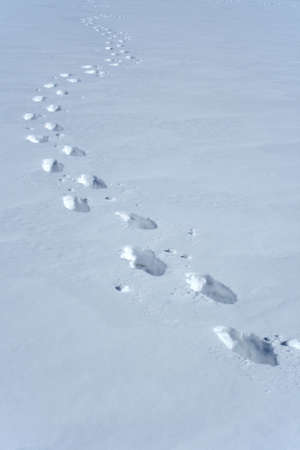 Footprints in the snow making a wavy path. Imagens