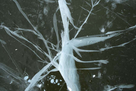 reminding: Frozen river: bizarre cracked ice, reminding an abstract white insect.