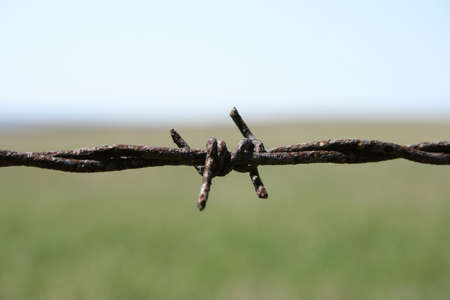 Rusty barbed wire macro. Shallow depth of field with blurry field and sky in the background.