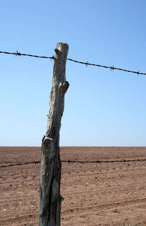 poll: Old barbed wire farm fence and cultivated farmland in spring.