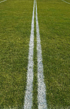 green lines: Boundary lines of a green playing field.