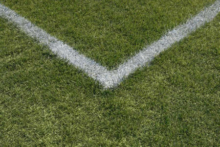 green lines: Corner boundary lines of a green grass sports field.