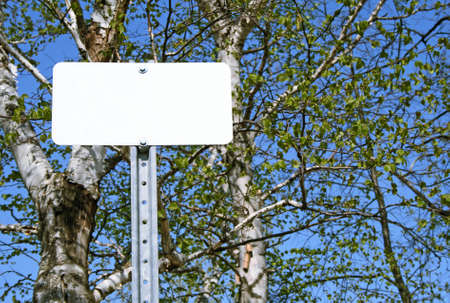 Blank sign with copy space in spring forest. photo