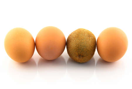 Kiwi, pretending to be an egg. White background. Stock Photo - 2458820