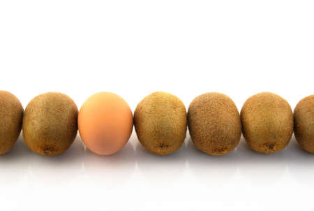 incompatible: One egg in a row of kiwis. White background.