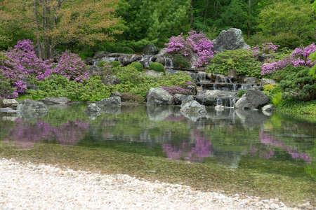 Blooming Japanese garden with water cascades reflecting in pond. photo