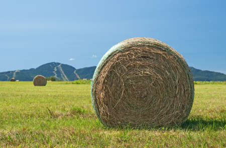 Bales of hay in the field with mountains in the background. photo