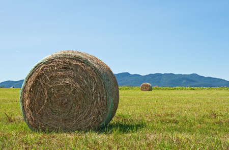 Bale of hay in the field with mountains on the horizon. photo
