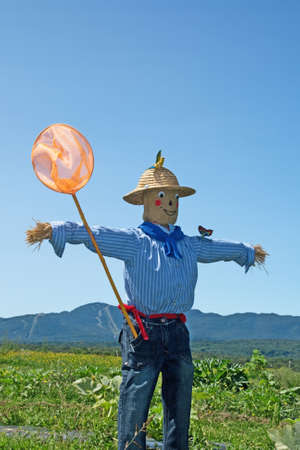 Rural scene - scarecrow with butterfly net in the field. photo