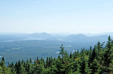 View over coniferous forest and mountains in Canada.