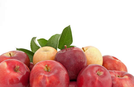 Variety of red and yellow apples with green leaves, on white background. Stock Photo - 8032904