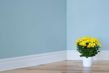 Bright yellow daisies in a white pot decorating the corner of a room  photo