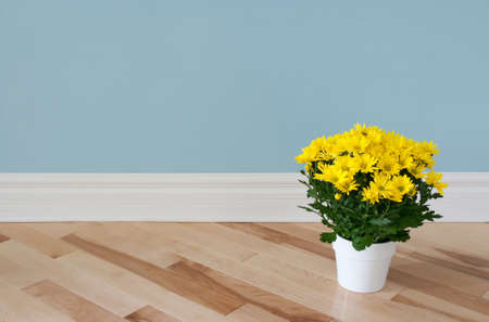 room for text: Bright yellow daisies in a white pot decorating a room
