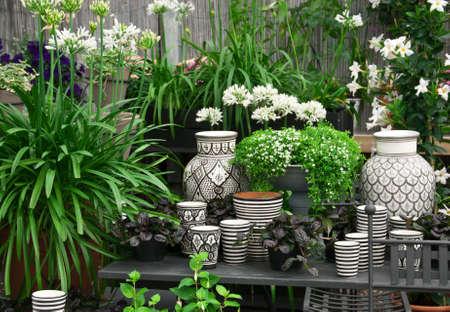 Mooie opstelling van planten en zwart en wit keramiek in een bloemenwinkel