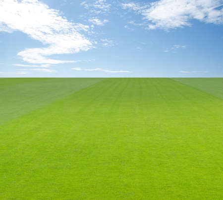 Endless green field under big blue sky with clouds  photo
