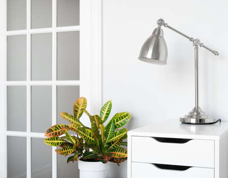 Modern room decor  Green plant, stylish furniture and lighting