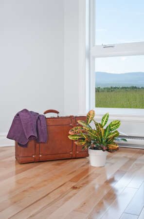 just arrived: Just arrived  Retro suitcase and plant in an empty room with beautiful view