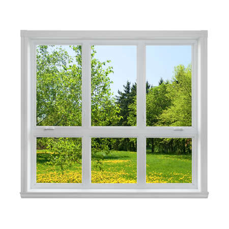 interior window: Spring dandelion lawn and green trees seen through the window