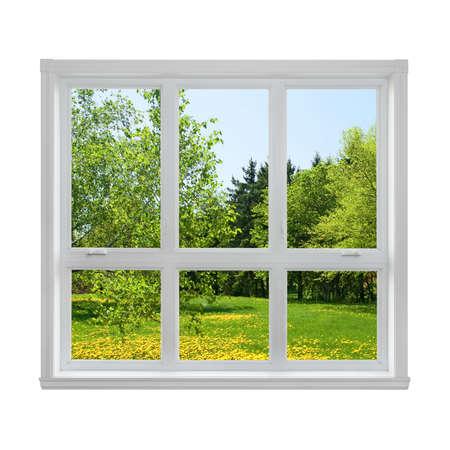 Spring paardebloem gazon en groene bomen gezien door het raam
