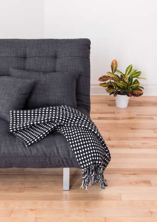 futon: Living room detail  Gray sofa with cushions and throw, and colorful plant  Stock Photo
