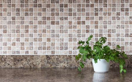 White pot with green herbs on kitchen countertop  Stock Photo