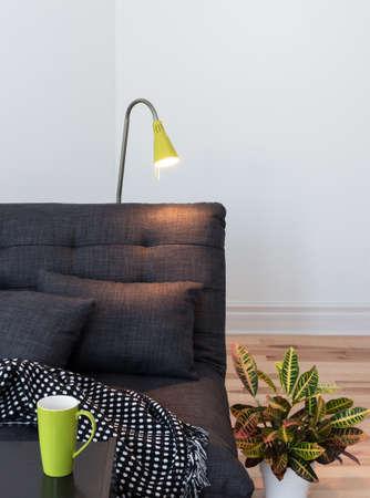룸 세부 사항을 생활. 아늑한 소파, 램프 및 다채로운 식물.