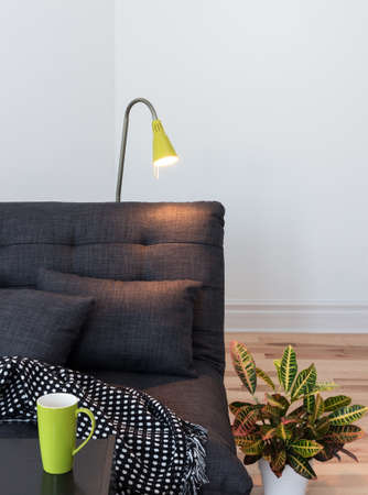 Living room detail. Cozy sofa, lamp and colorful plant.